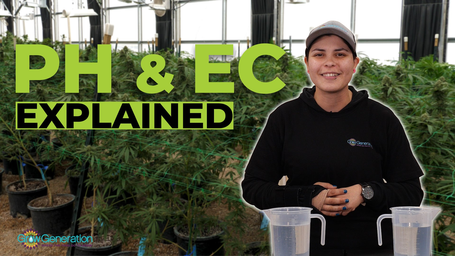 How To Measure and Adjust pH, EC, and Water Quality