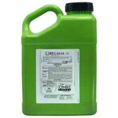 Marrone Bio Innovations Regalia CG 2.5 Gallon