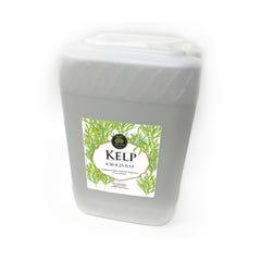 Age Old Kelp, 6 gal