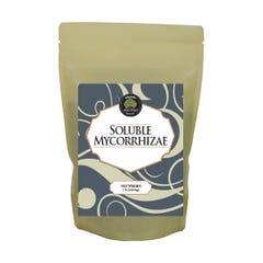 Age Old Soluble Mycorrhizae, 1 lb
