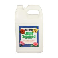 Maxicrop Liquid Seaweed Plus Iron, 1 gal