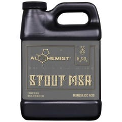 Alchemist Stout MSA Quart (12/Cs)