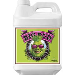 Advanced Nutrients Big Bud 10L