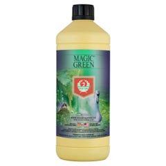 House and Garden Magic Green 250 ml (16/Cs)
