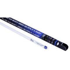 Ultra Sun T5 54 Watt HO Lamp 4 ft Blue 6500K (25/Cs)