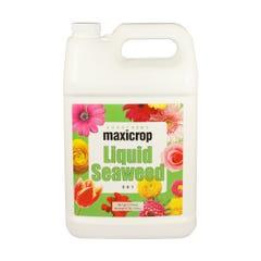 Maxicrop Liquid Seaweed, 2.5 gal