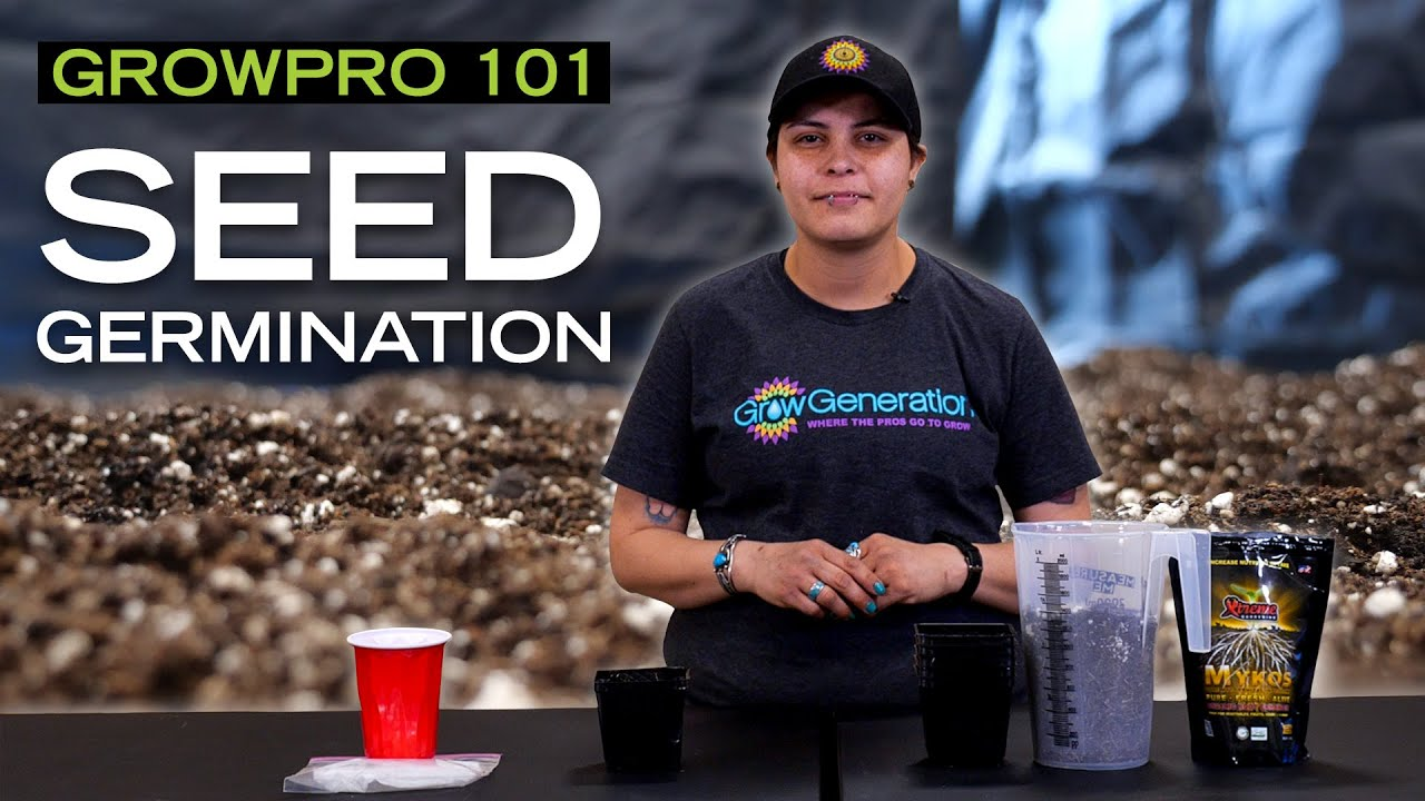 How to Germinate a Seed - GrowPro 101