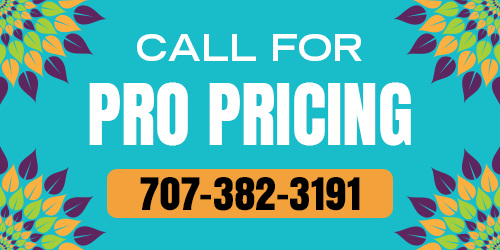 Call for Pro pricing!